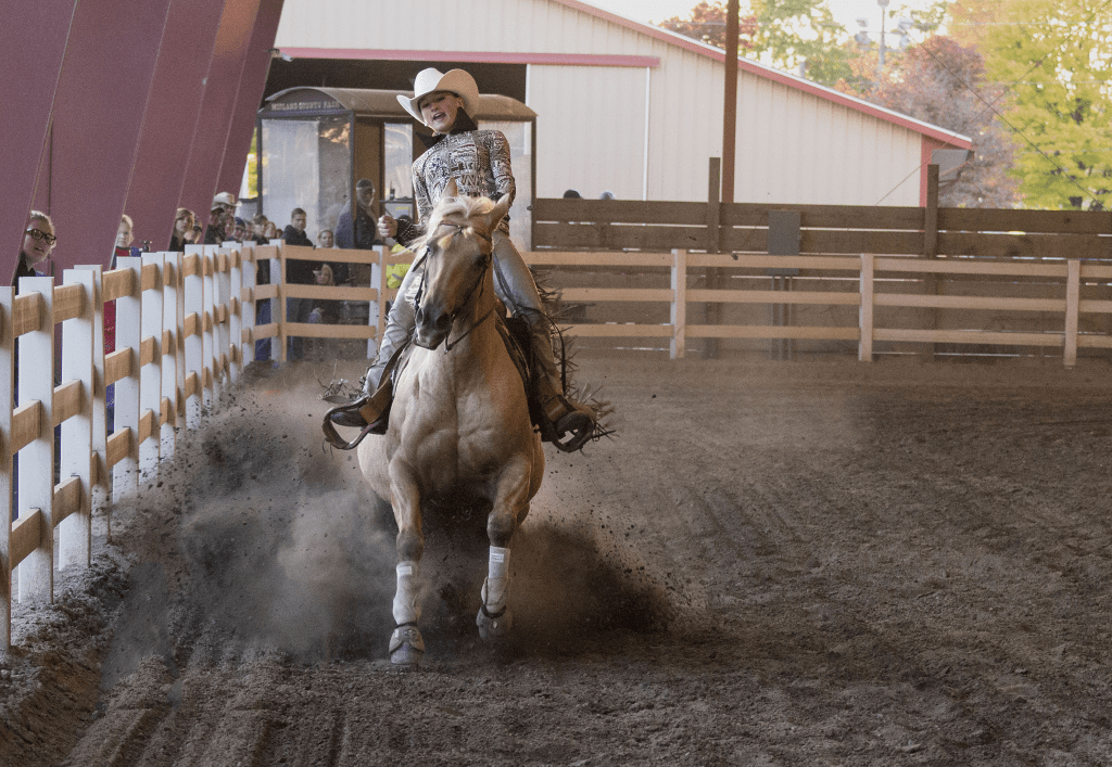 Reining horse during pattern in Midland