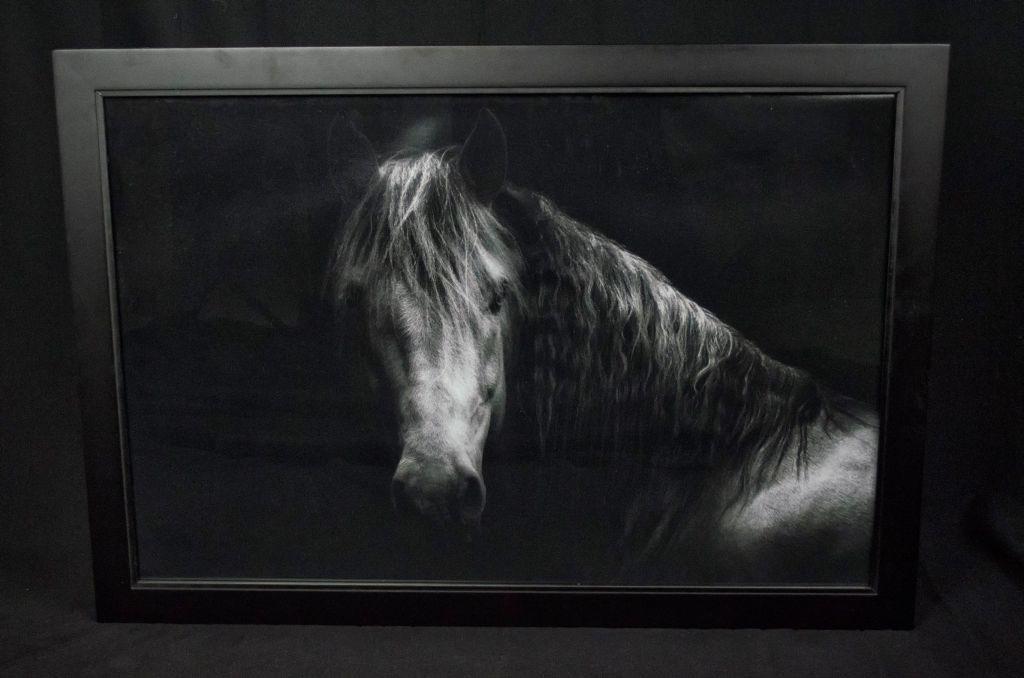 20z30 Framed Print from Saddleback Photo